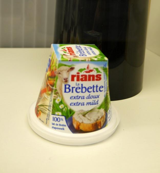 brebette rians (943x1024)