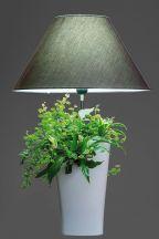 Lampe Lumipouss