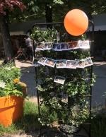 Butinages_jardinsjardin2